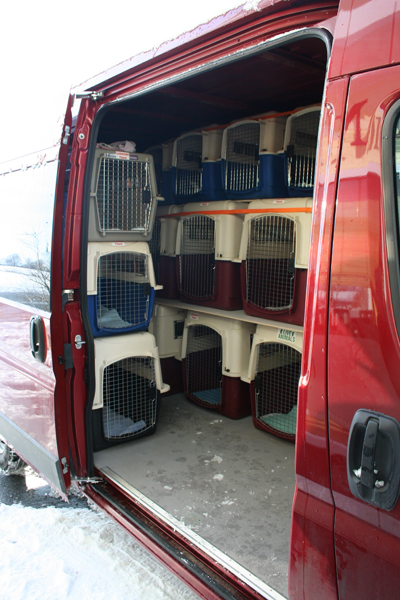 tiertransporte retriever in not liberty for dogs. Black Bedroom Furniture Sets. Home Design Ideas